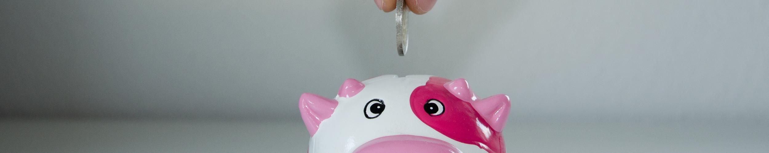 Financiële en praktische ondersteuning bij zwangerschap en bevalling